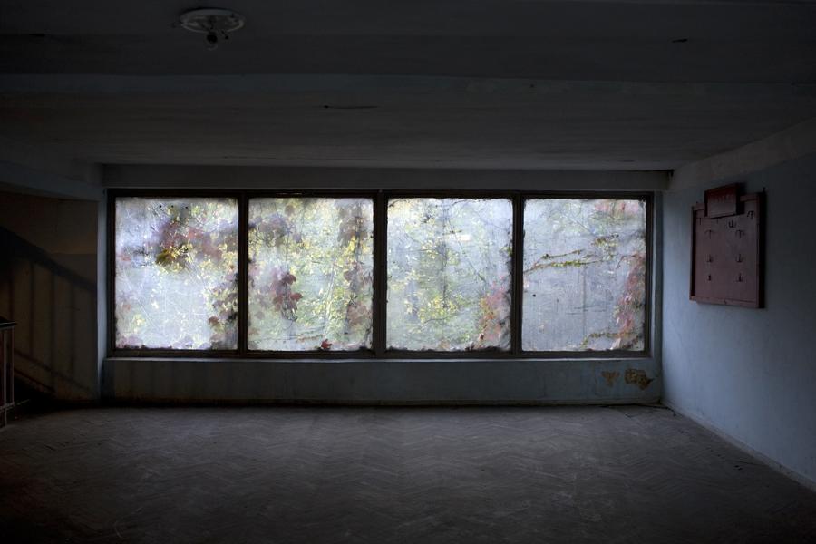 """David Brunetti, photographer, Georgia, IDPS"""